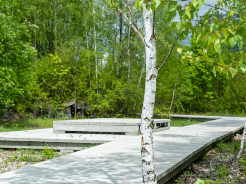 2019-05-14-CAImmo-Muenchen-Landschaftspark-BK-9162