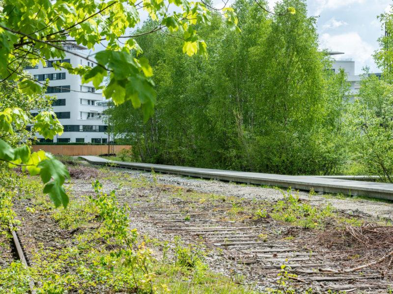2019-05-14-CAImmo-Muenchen-Landschaftspark-BK-9168